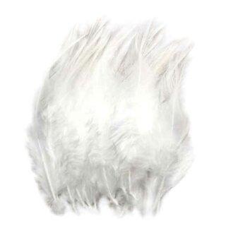 Weiße Federn im günstigen Pack zu 50 Stück 10-15cm