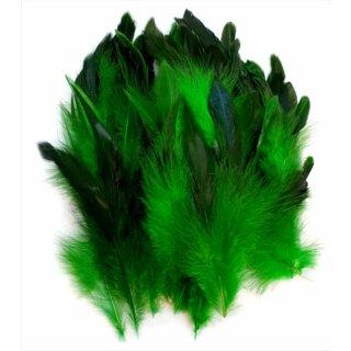 Dunkel-Grün gefärbte Federn im 50er Pack 10-15cm