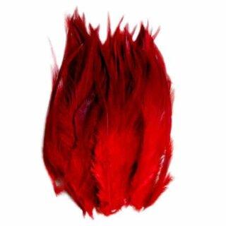 Federn Rot gefärbt im 50er Pack 10-15cm
