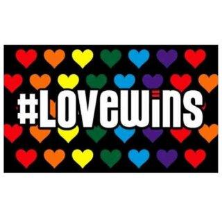 """Pride-Flagge""""Love Wins"""" 60*90cm CSD Herzen/ Regenbogen"""